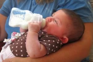 Best Organic Baby Formula